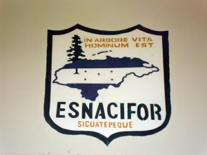 ESNACIFOR logo painted on a wall